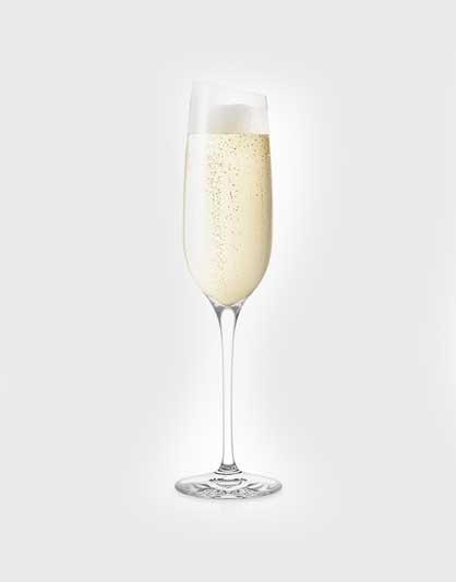 Champagne glazen – Set van 6 stuks
